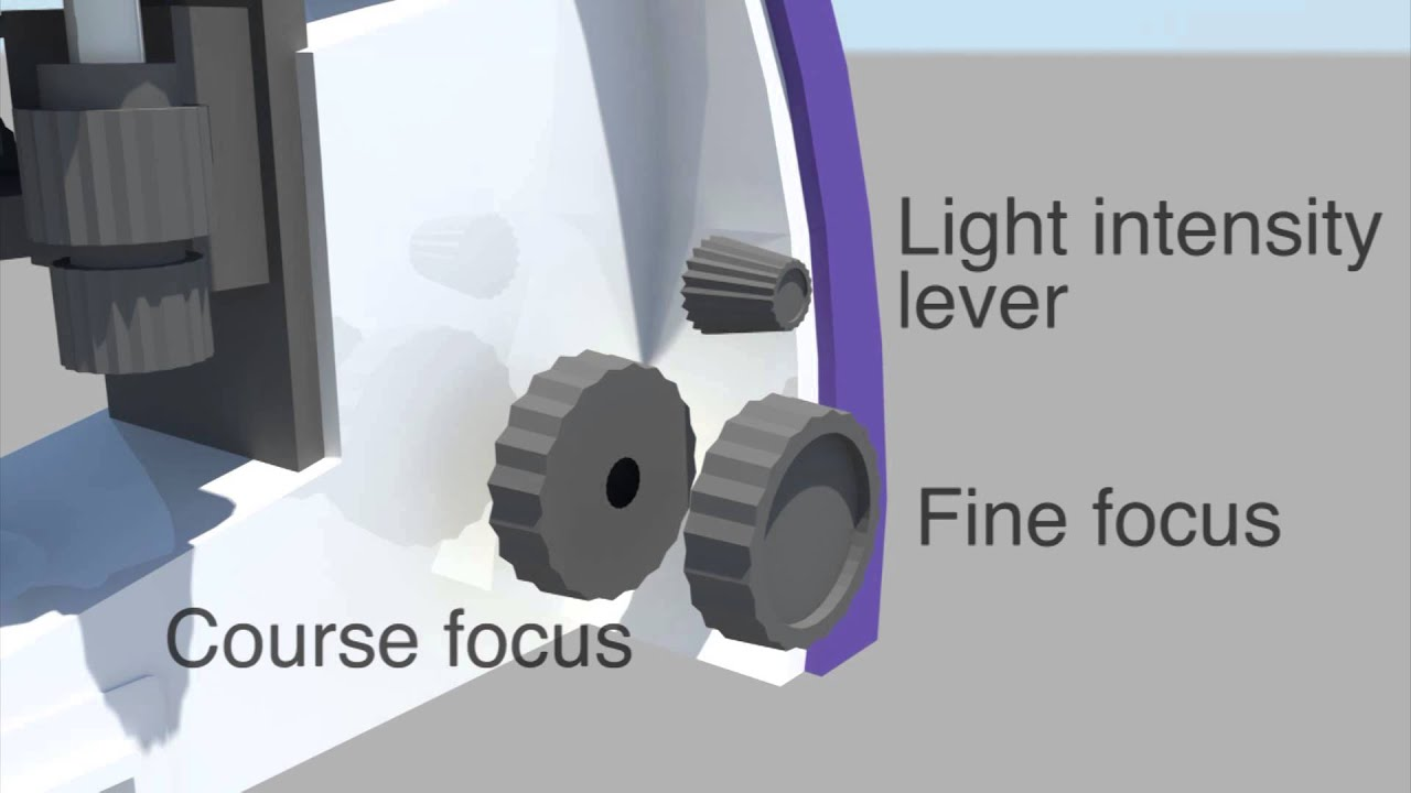 Primo Star Microscope Hd Exploded View