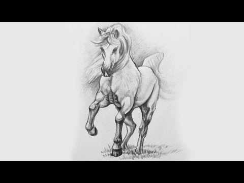 Drawing a horse with pencil how to draw beautiful horses for Beautiful images to draw