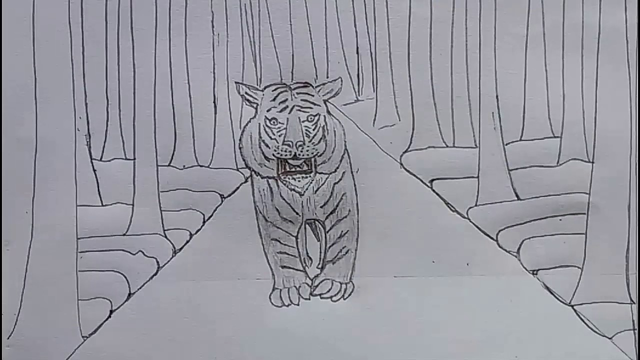 how to draw the tiger in the jungle with only one pencil