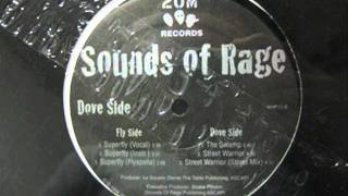 Sounds Of Rage - Street Warrior