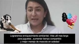 #ICONOTIPS QUE JUGUETE DEBO ELEGIR PARA MI PERRO