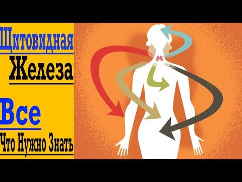 Щитовидная Железа - Лишний Вес, Сухая Кожа, Нет Сил и Выпадение Волос ! Гипотиреоз и Аутоиммунные