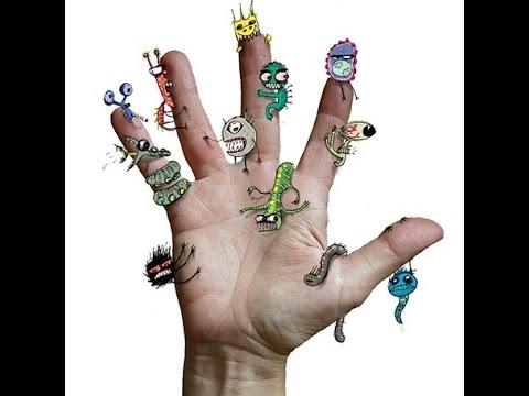 Черви паразиты в организме человека видео Симптомы