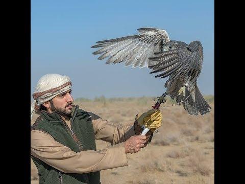 Sheikh Hamdan Uzbekistan Trip 2017