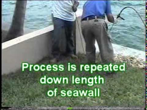 Seawall Stabilization with Prime Flex 910