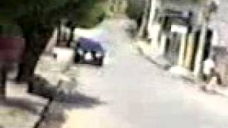 Videos Rona 0008