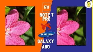 Xiaomi Redmi Note 7 Pro vs Samsung Galaxy A50 Blind camera comparison: which phone wins?