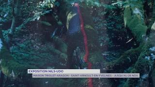 Exposition : la nature rêvée de Nils Udo