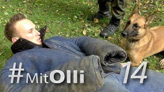 Mit Olli - in der Diensthundeschule - Bundeswehr