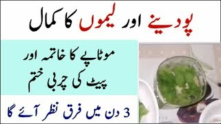 Best Lemon And Mint Water Weight Loss Drink