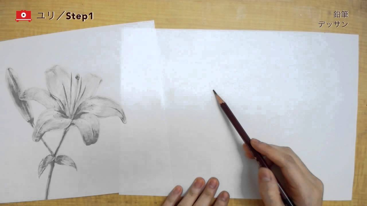 デッサンの描き方】鉛筆一本で表現するユリの花 - youtube