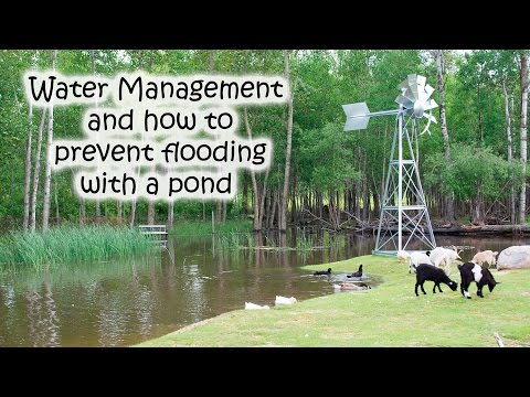 Water Management and how to prevent flooding