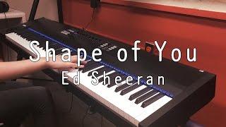 Shape of You - Ed Sheeran Piano Cover 피아노 커버