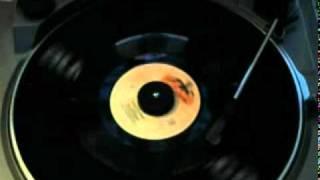 Ray Stevens: Ahab The Arab (Collectables 45 Vinyl)