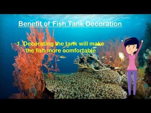 Fish Tank Decorations