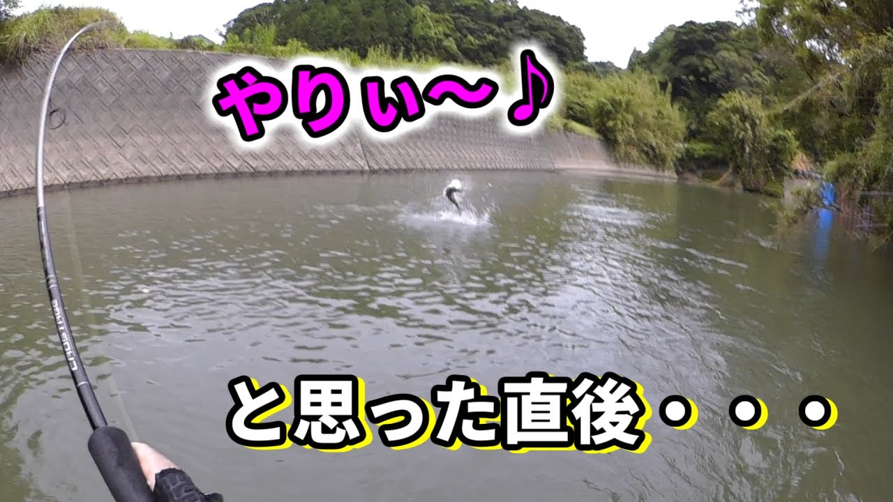 【カラーチェンジ】の効果。小型河川シーバスデイゲーム!