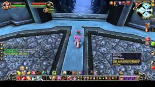 WoW   Full Icecrown Citadel 25 heroic solo   ICC 25 HC   ThatUIGuy