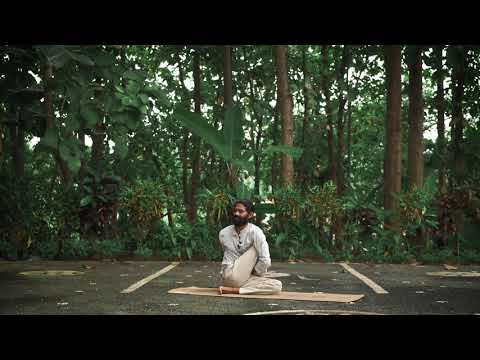 Ardha Matsyendrasana - Sitting Half spinal Twist