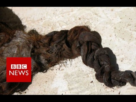 Romsey Abbey: The mystery of the hair in the coffin (360 video) - BBC News