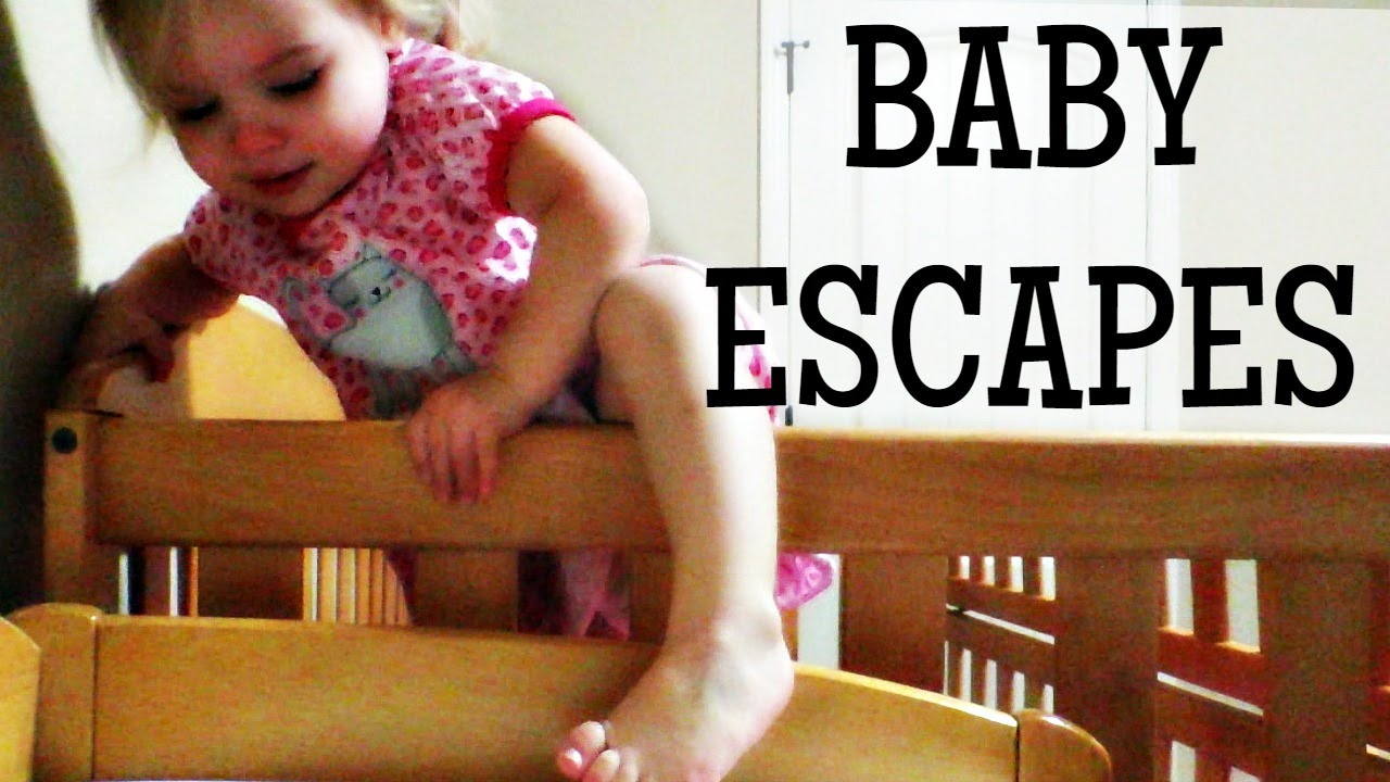 Baby escapes crib youtube - Baby Escapes Crib Youtube 19