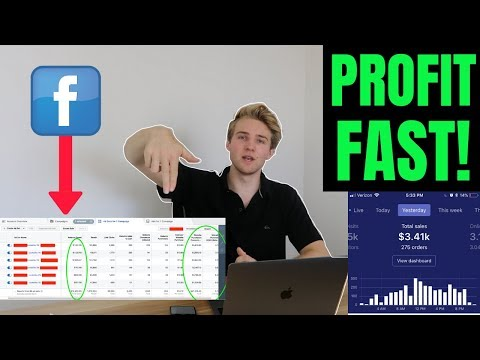 Shopify Dropshipping In Q4: How To Start Facebook Ads & PROFIT FAST (Series #2)