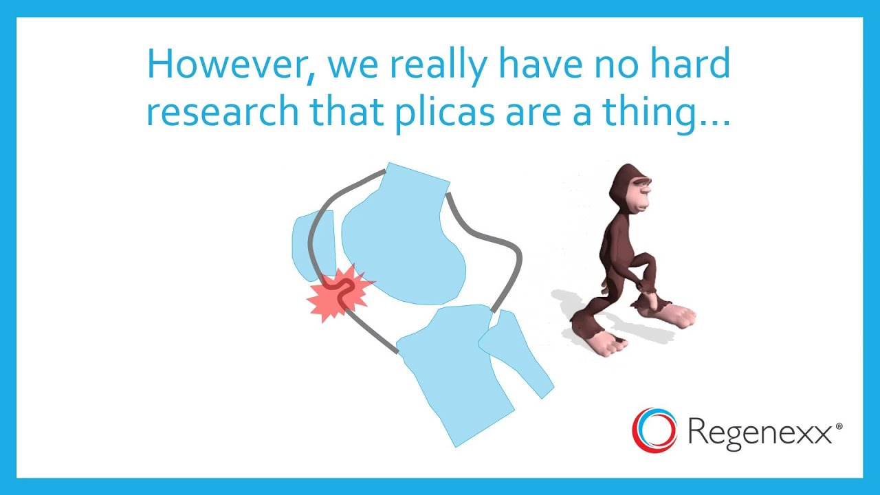 What is a Plica? - YouTube