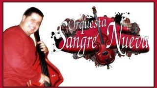 Ray Rodriguez, Orquesta Sangre Nueva, PROTAGONISTAS DE LA SALSA, Cantan Peter Pagan y Jesus Pagan.