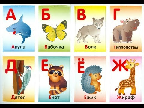 Картинки животных для азбуки