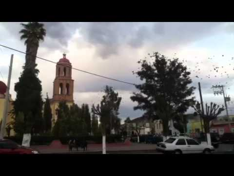 Jardín de sombrerete zacatecas Travel Video