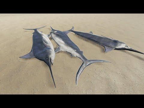 荒岛求生32:我捉到三条怪鱼,鼻子像针一样