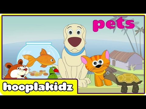 Preschool Activity | Learn About Pets | HooplaKidz