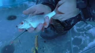 Рыбалка зимой ночью. Железногорское водохранилище. Д. Ревякин