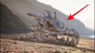 Viral,!! Warga temukan kerangka Naga sepanjang 60 kaki begini penampakannya,!!