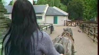 Le zoo de la Pépinière, nouvelle formule
