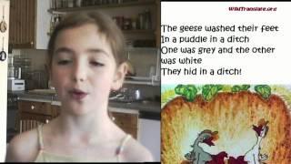 Two merry geese - Два весёлых гуся (English)