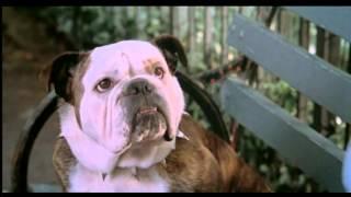 Little Nicky (2000): Teaser Trailer Español