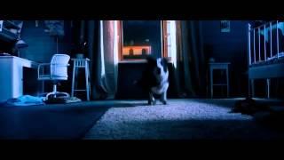 Собаки защитники. Ёлки лохматые (2014) Трейлер