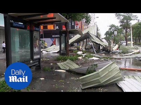 Typhoon Soudelor makes landfall in Taiwan, obliterating city - Daily Mail