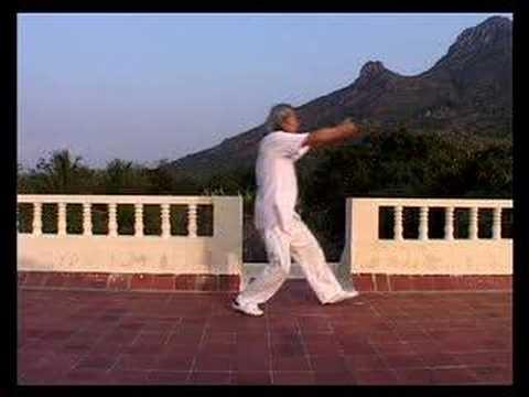 Master Alex Lim, Qigong - India 2007 Part 2/4