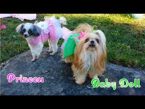 Cute Puppy Tea Party by Jessa Ireland