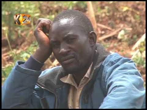 marauding-gang-kill-four-people-and-ten-cows-in-mt-elgon