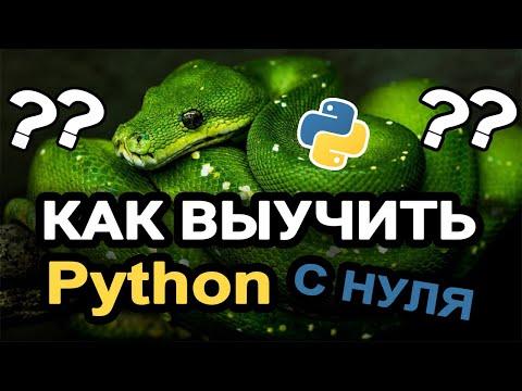 Как быстро выучить Python с нуля? Самый легкий и рабочий способ