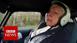 Rally driving 72 year old returns to racing   BBC News