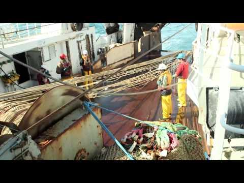 Sealord & Sustainable Fishing