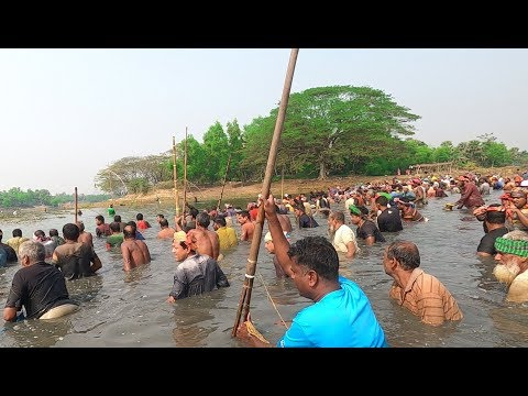 Wow ! Best Festival Of Fishing In Bangladesh And Huge Big Fish Catching