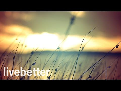 Best Classical Music: The Most RELAXING Classical Music - Bach, Mozart, Beethoven, Chopin