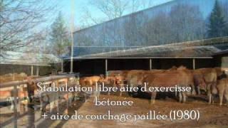 L'hivernage des animaux de l'Earl de la Nouaille