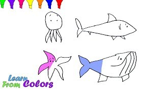 Sea Animals Shark Dolphin Whale Coloring Book For Children