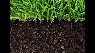 """Открытый урок географии по теме """"Почвы. Их виды и загрязнения"""""""