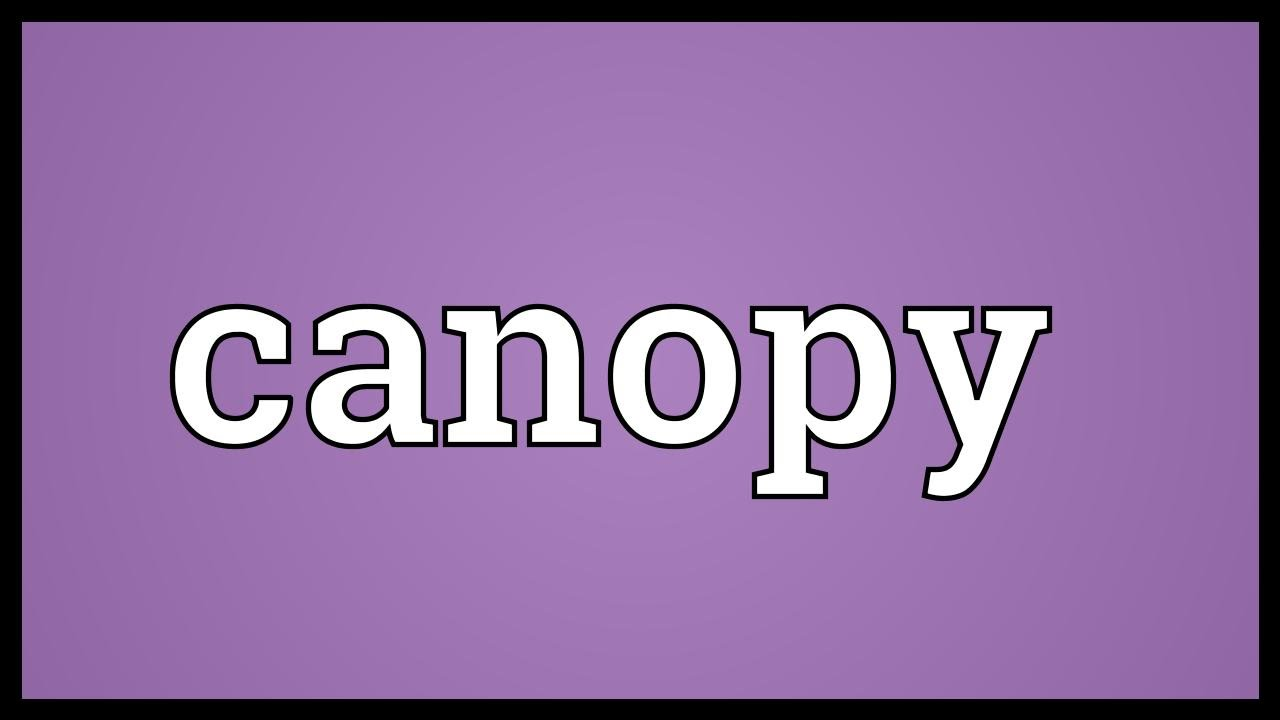 Canopy meaning youtube for Canape meaning